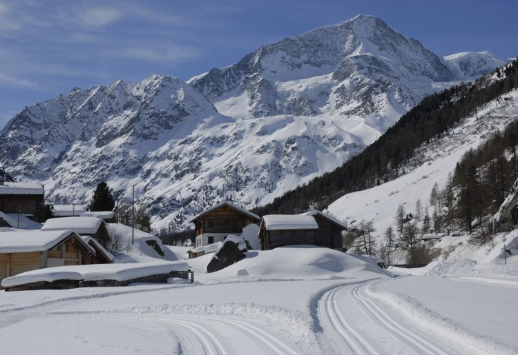 Cross country trails of Arolla