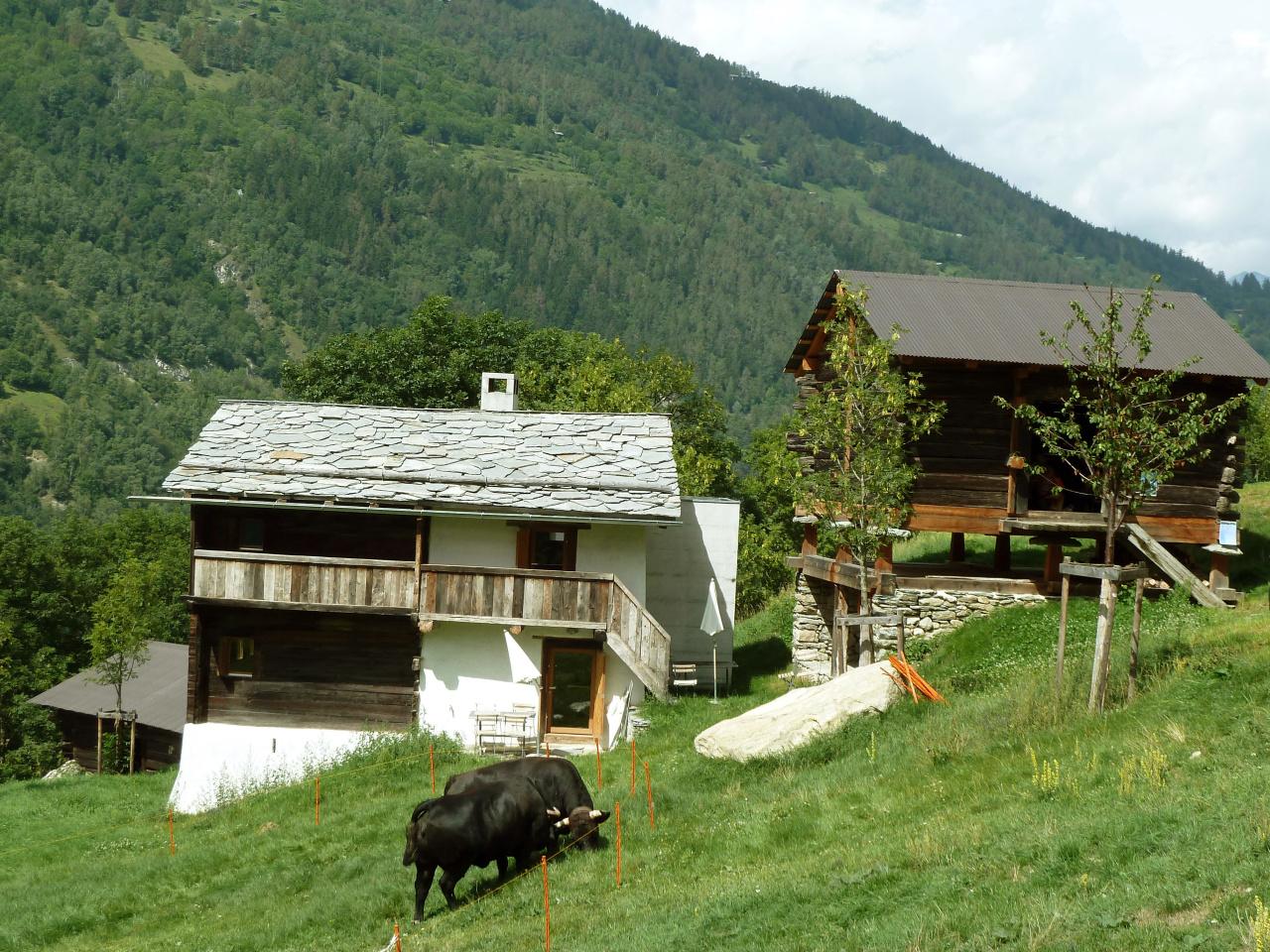 Agritourism Ossona
