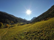 Trail : Le Long du Val d'Arolla-40369