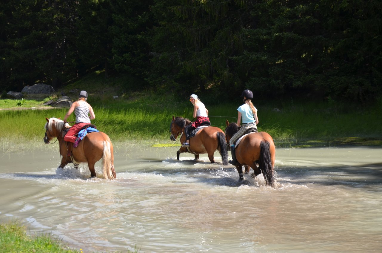 Horse Riding - Ranch Le Caribou