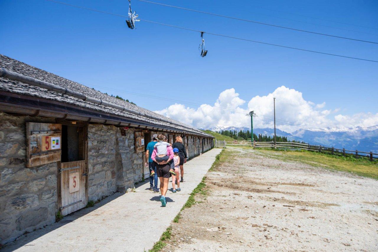 Besuch der Alpkäserei von Thyon