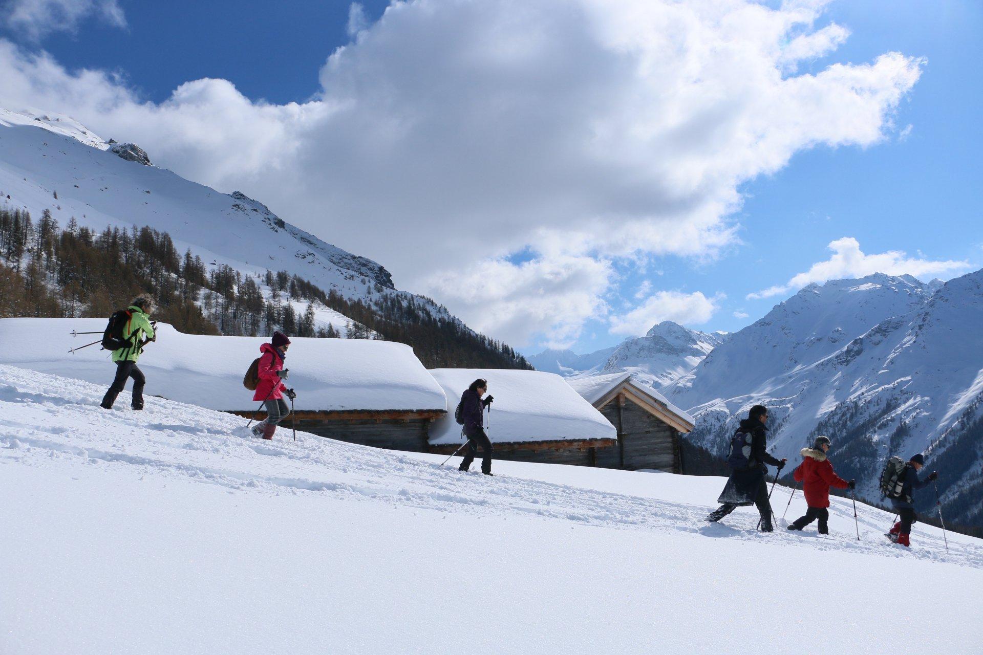 Top 3 des randos-raquettes au Val des Dix
