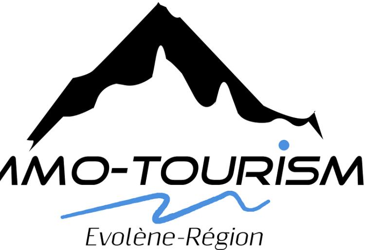 Agence Immo-Tourisme Evolène-Région Vente