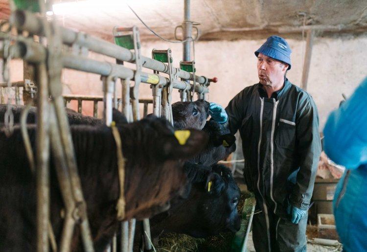 Visit to the Clos-Lombard Farm in Evolène